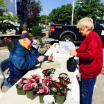 May 19th OTS Plant Sale